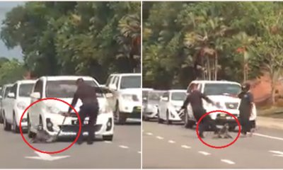 2 Men Moved An Injured Monkey Off Road In Melaka By Kicking, Pulling & Dragging It By It's Tail - WORLD OF BUZZ