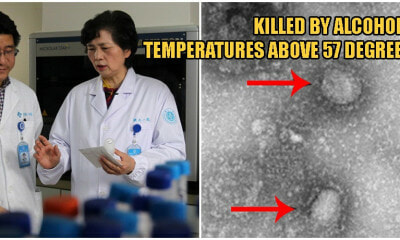Experts Say Deadly Wuhan Virus Can Be Killed By Alcohol & High Temperatures! - WORLD OF BUZZ 3