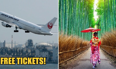 Japan Airlines is Giving Away 50,000 FREE Air Tickets to International Tourists in Feb 2020 - WORLD OF BUZZ 2
