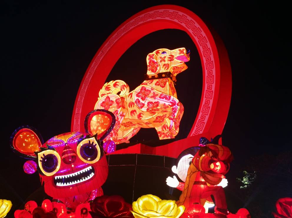 Jenjarom Lights Lit Weih Cny Lantern & Floral Festival - World Of Buzz 10