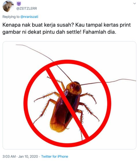 M'sian Girl Lines Up Mothballs to Prevent Cockroaches From Entering Her Room, Netizens Are Entertained - WORLD OF BUZZ 3