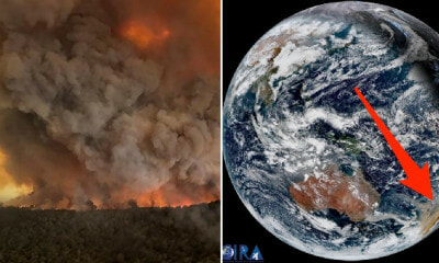 "NASA: Smoke From Australia's Bushfires Will Make At Least ""One Full Circuit"" Around the World - WORLD OF BUZZ 5"
