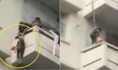Priorities: Grandmother Hangs Her Grandson From 5th Floor To Rescue A Kitty - WORLD OF BUZZ 3
