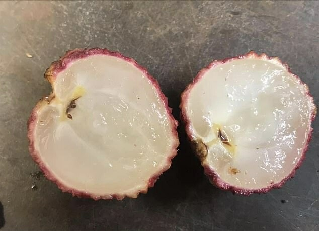 Seedless Lychee Is Now Available And We Can't Wait To Taste Some - WORLD OF BUZZ 2