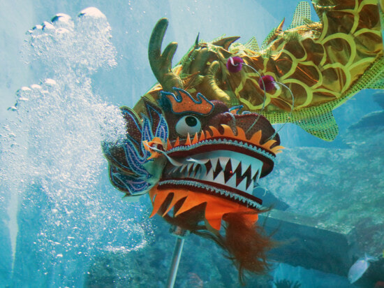 [TEST] Think SG is Boring? These Amazing Activities Including an Underwater Dragon Dance Will Prove You Wrong! - WORLD OF BUZZ 10