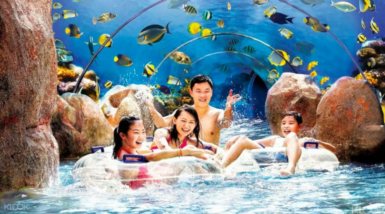 [TEST] Think SG is Boring? These Amazing Activities Including an Underwater Dragon Dance Will Prove You Wrong! - WORLD OF BUZZ 11
