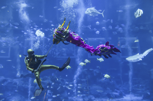 [TEST] Think SG is Boring? These Amazing Activities Including an Underwater Dragon Dance Will Prove You Wrong! - WORLD OF BUZZ 12