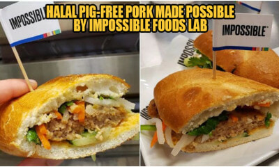 The First-Ever Vegan Pig-Free Pork Has Been Created, & This Muslim Girl Reviewed It! - WORLD OF BUZZ