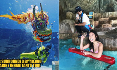 Think SG is Boring? These Amazing Activities Including an Underwater Dragon Dance Will Prove You Wrong! - WORLD OF BUZZ