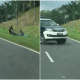 Two Officers Forcefully Nabs Motorcyclist For Fleeing A Roadblock In Lahad Datu - WORLD OF BUZZ 4