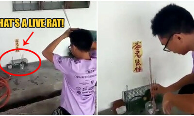 Video: M'sian Man Catches Rat In Cage Then Prays To It Because It's The Year of The Rat - WORLD OF BUZZ