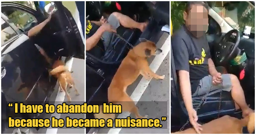 Video: Two M'sian Men Rescue Injured Dog From Owner Who Wanted To Abandon It - World Of Buzz