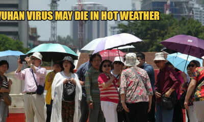 Experts Predict Wuhan Virus Will Disappear in May Due to Warm Summer Sun in China - WORLD OF BUZZ