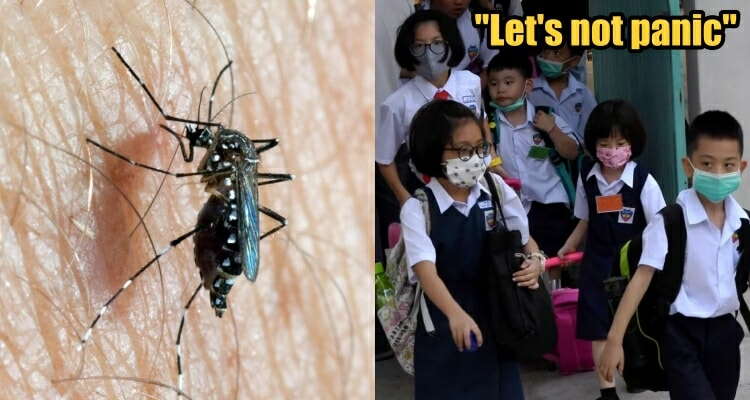 M'sian Doctor: We Should Worry About Getting Influenza A & Dengue Instead Of The Wuhan Virus - WORLD OF BUZZ 4