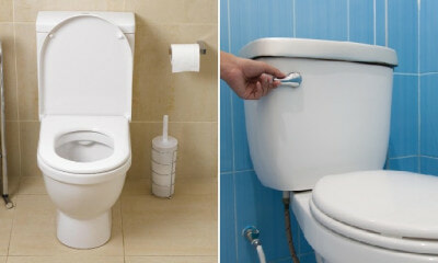 Study: Flushing Toilet Without Closing Lid Can Cause 80,000 Bacteria Droplets to Linger for Hours - WORLD OF BUZZ 2