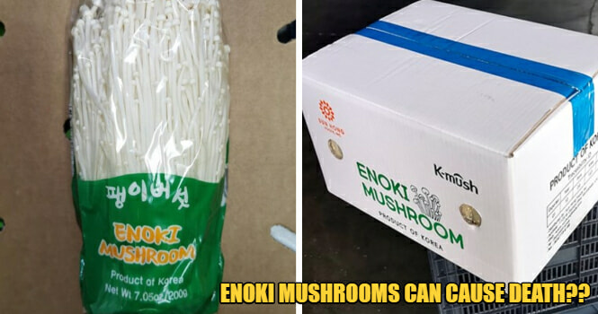 32 Ill & 4 Dead In US Because Of Consuming Enoki Mushroom - WORLD OF BUZZ
