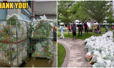 M'sian Wholesale Vendors Give Out 10 Tonnes of Free Vegetables To Kuantan Residents During MCO - WORLD OF BUZZ 2