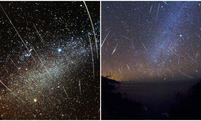 M'sians Will Be Able To See 8 Meteor Showers in 2020! Here Are The Dates To Look Out For - WORLD OF BUZZ 7