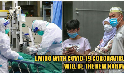 No, The Coronavirus Won't Stop Until End of 2020 & It Will Become Part of Our Daily Lives, Say Experts - WORLD OF BUZZ 2