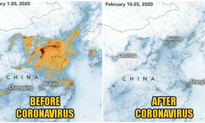 Pollution In China Is Clearing Up After Coronavirus Forces Factories To Close, Satellite Images Prove - WORLD OF BUZZ