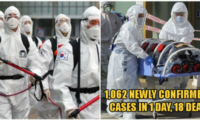 South Korea Records Explosive 1,062 New Coronavirus Cases In Just ONE Day, Raising Total To 4,212 - WORLD OF BUZZ 3