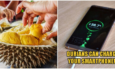 Your Favourite Durian Can Potentially Replace The Batteries In Your Smartphone & Super-Charge Them - World Of Buzz 1