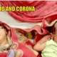 Corona And Covid Are Names Given Newborn Twins By Their Parents - WORLD OF BUZZ 2