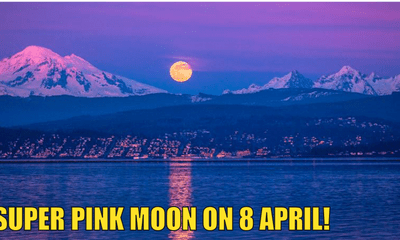 Malaysians Can Observe The Super Pink Moon On Wednesday 8 April - WORLD OF BUZZ 2