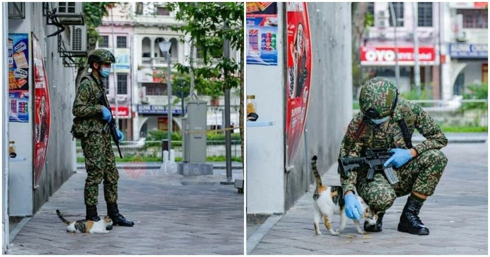 Photos: Cute Catto Accompanies Abang Askar During - WORLD OF BUZZ 5