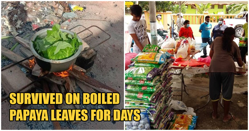 Unpaid Foreign Workers In M'sia Cook Raw Papaya Leaves To Stave Off Starvation During MCO - WORLD OF BUZZ 3