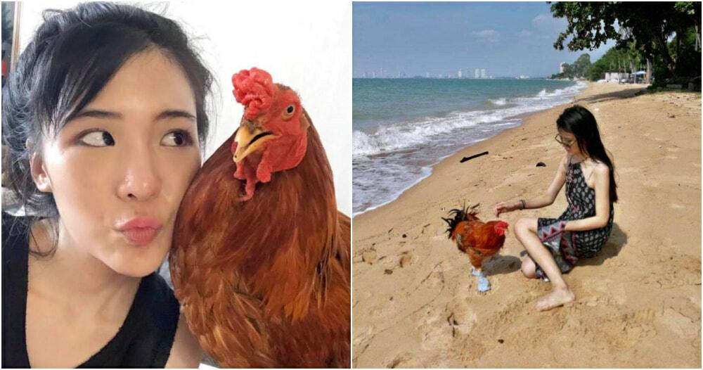 Ft Image Chicken