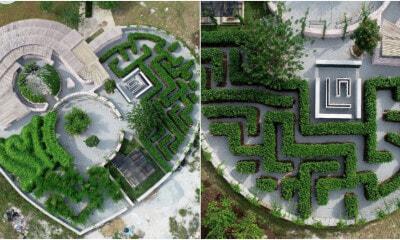 Maze Park Ft