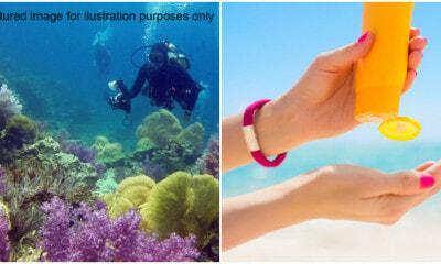 Sunscreen Destroy Coral Reef 1 E1628141059959