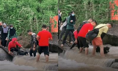 Hikers Help Dog Cross River