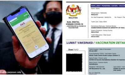 Mysejahtera Certificate Pdf